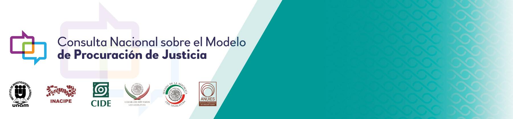 cide_Consulta-Nacional_sobre_el_Modelo_de_Procuracion_de_Justicia