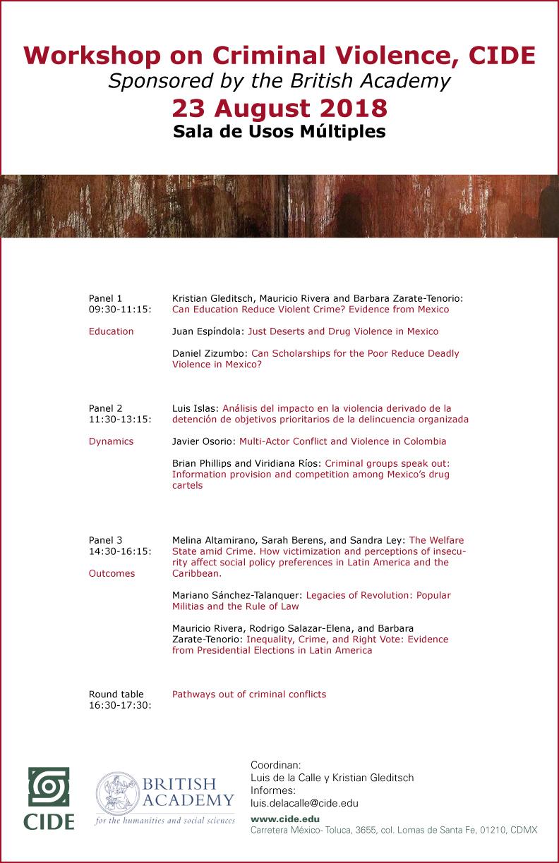Workshop on Criminal Violence, CIDE