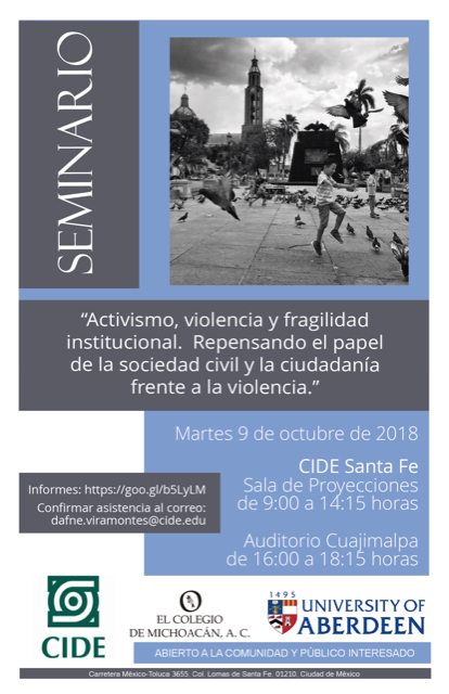 Seminario «Activismo, violencia y fragilidad institucional»