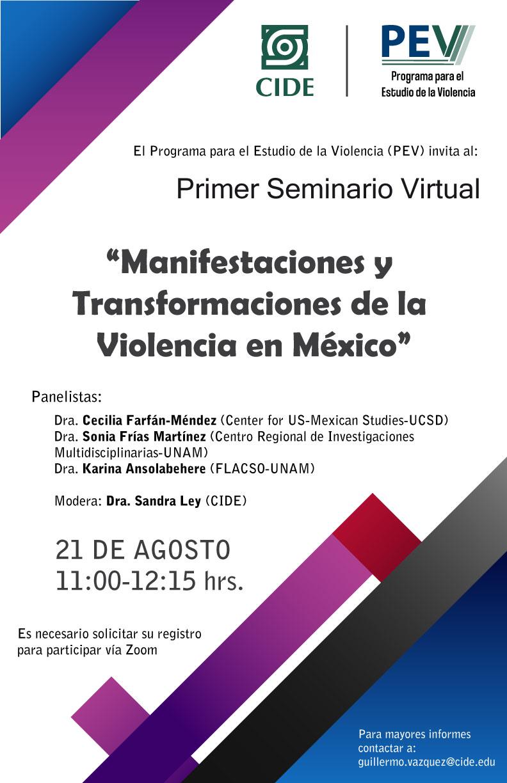 Seminario Virtual: Manifestaciones y transformaciones de la violencia en México