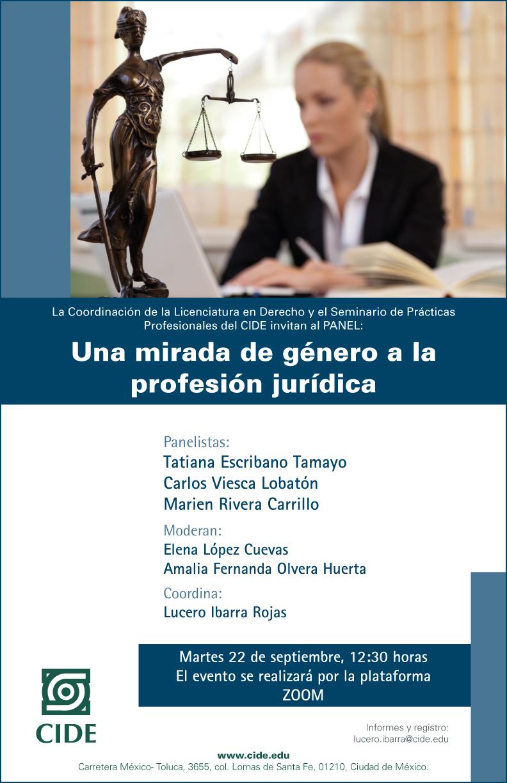 Panel: Una mirada de género a la profesión jurídica
