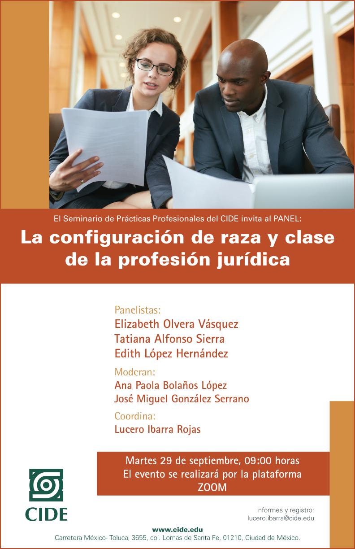 Panel: La configuración de raza y clase de la profesión jurídica.