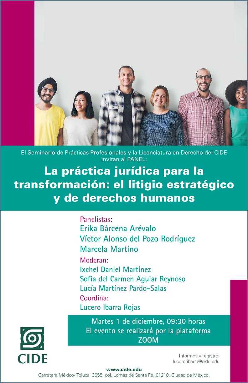 Seminario de Prácticas Profesionales: La práctica jurídica para la transformación: el litigio estratégico y de derechos humanos