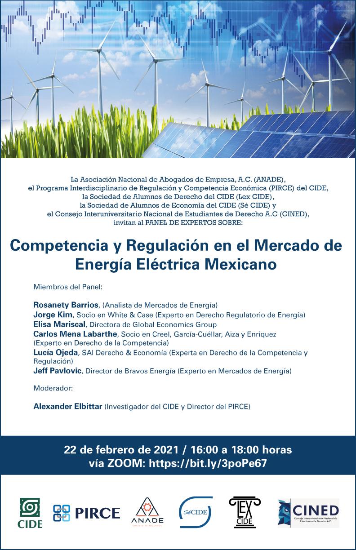 Panel: Competencia y Regulación en el Mercado de Energía Eléctrica Mexicano